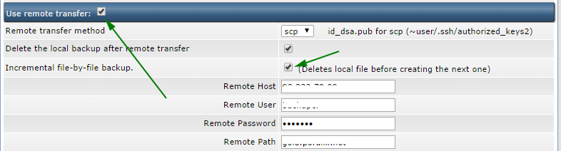 Configure Full System Backup in DirectAdmin to use remote incremental file-by-file transfer.